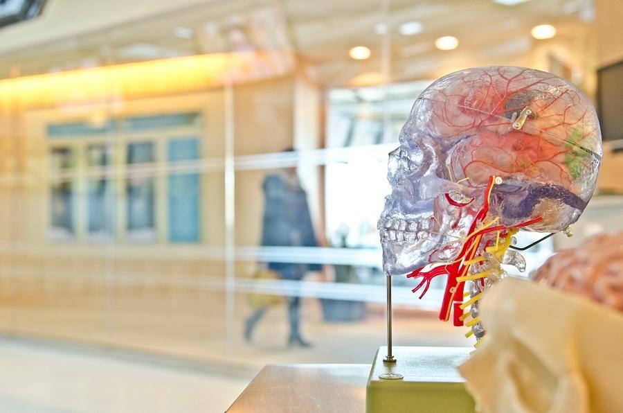 Advantages of 3D BioPrinting - Izumi International .jpg